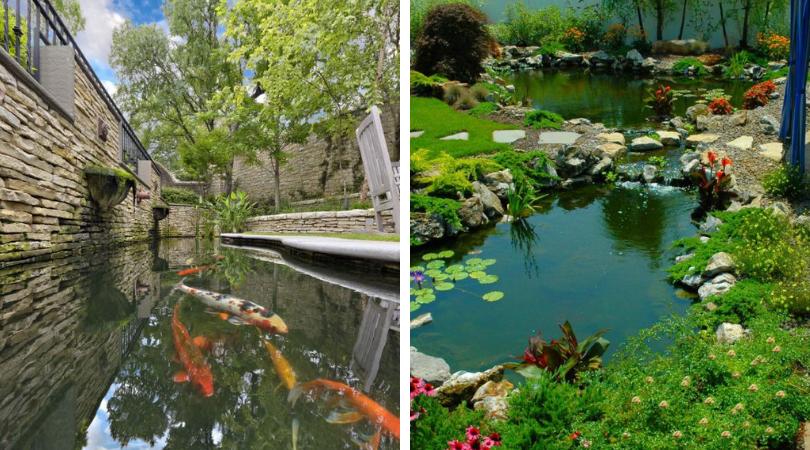 сад с прудом для рыбы