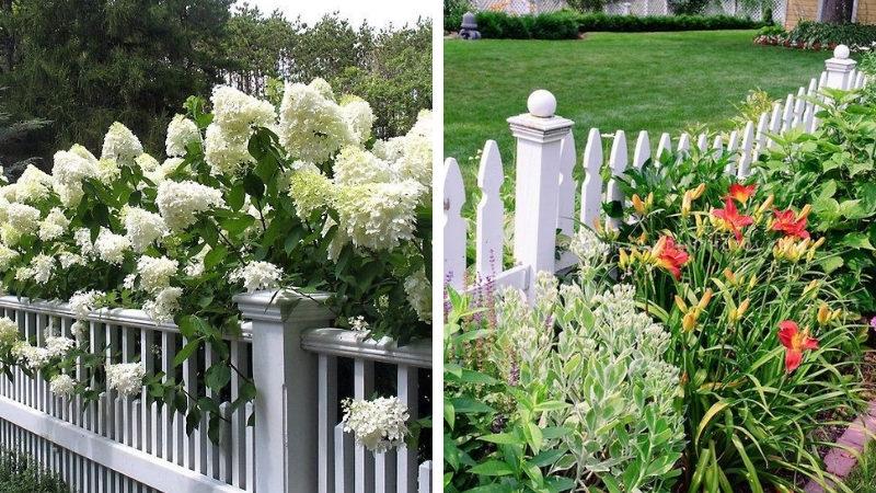 Декоративный забор белого цвета
