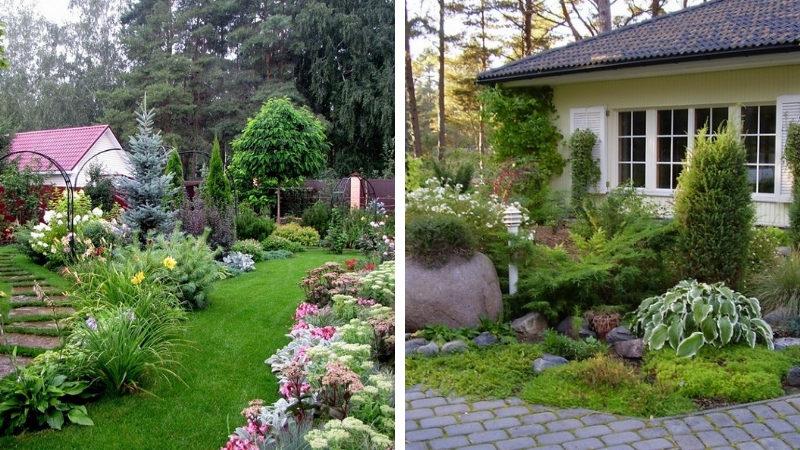 Ландшафтный дизайн дачного двора