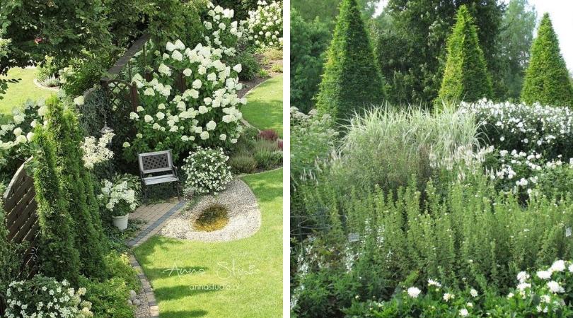 Ландшафтный дизайн лунного сада