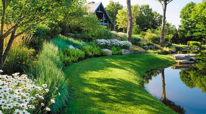 Ландшафтный дизайн участка у пруда и реки