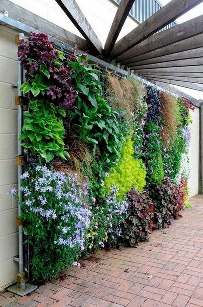 зеленая стена