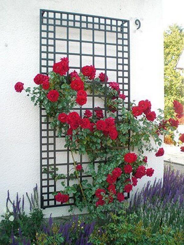 опоры для цветов