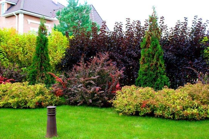 садовый дизайн
