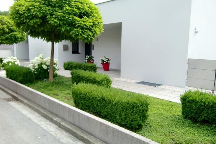 дизайн двора в частном доме