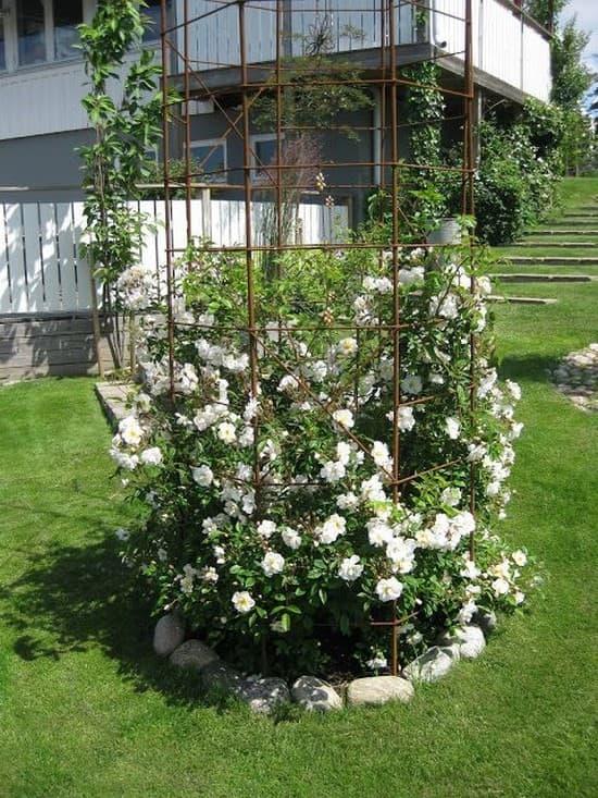 кованые опоры для роз